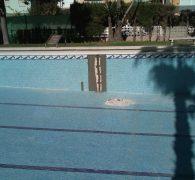 Repica Mantenimiento de piscinas2